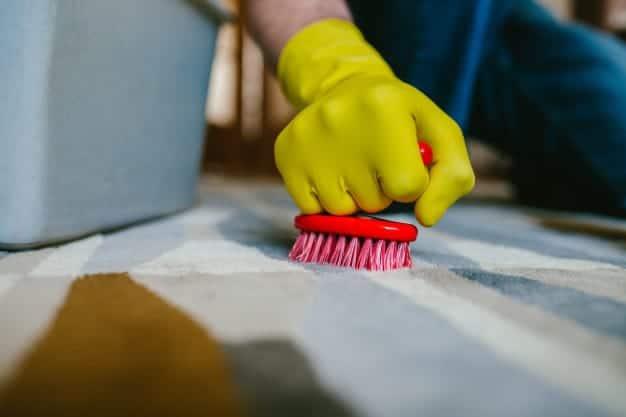 טיפים לטיפול וניקוי השטיח