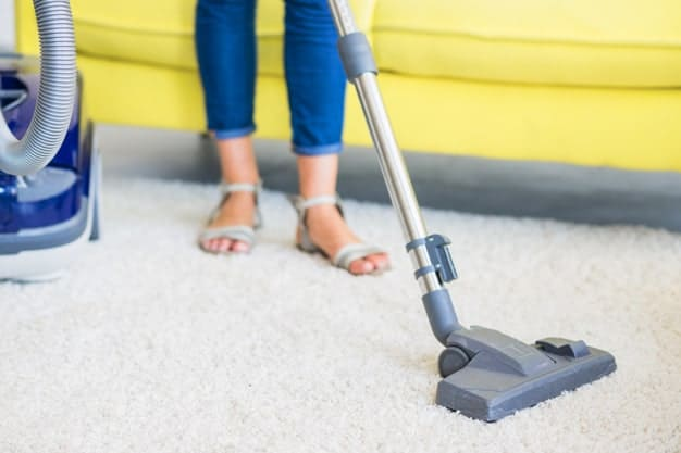 תחזוקת שטיחי שאגי